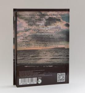 Peter Post - Wachabloesung - deutsche Dylan-Covers Produktfoto 2
