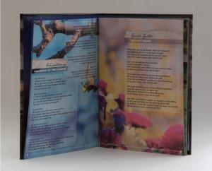 Peter Post - Wachabloesung - deutsche Dylan-Covers Produktfoto 4